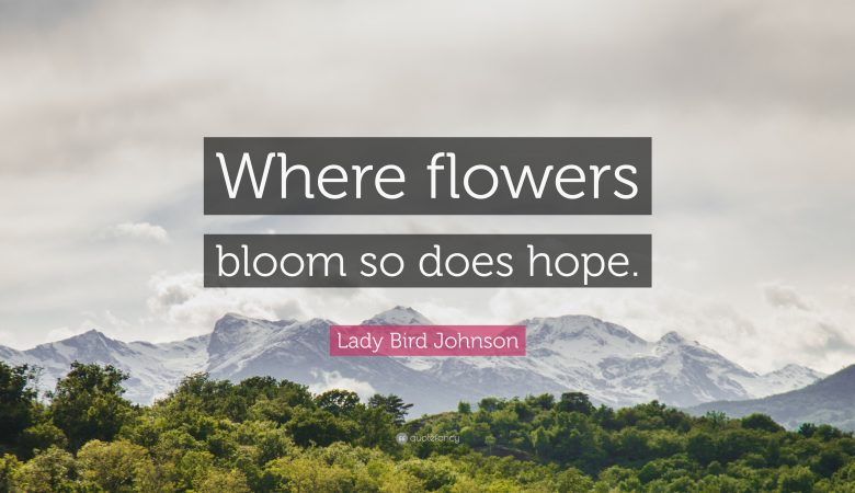 flower quotes lovenregards blog ideas new stories