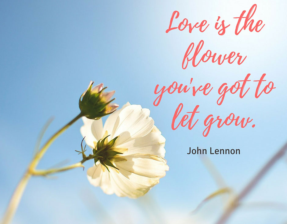 flowers quotes which can make your loved one smile