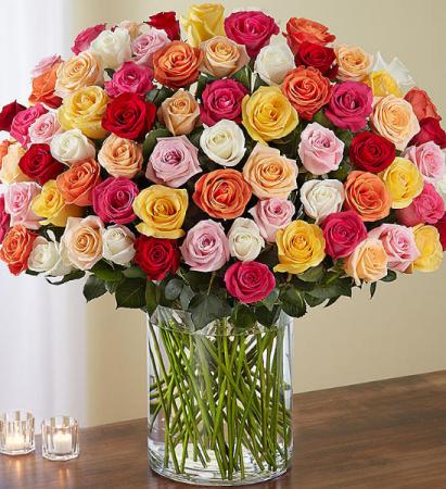 120 assorted rose