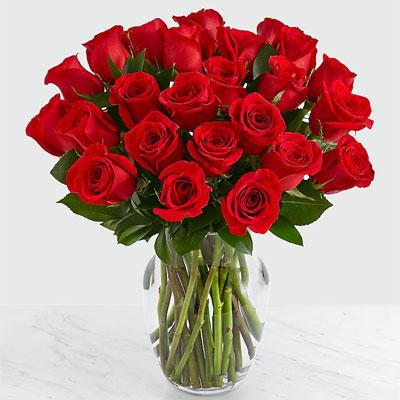 25 long stem red roses in vase