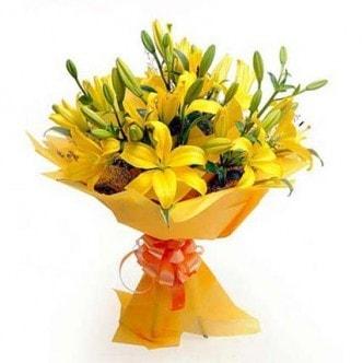 Sunshine lilies