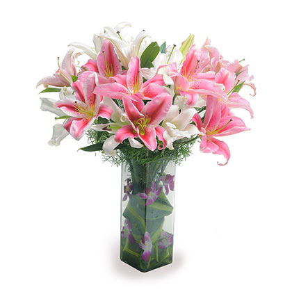 Pink and white lilies