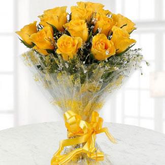 Friendly yellows