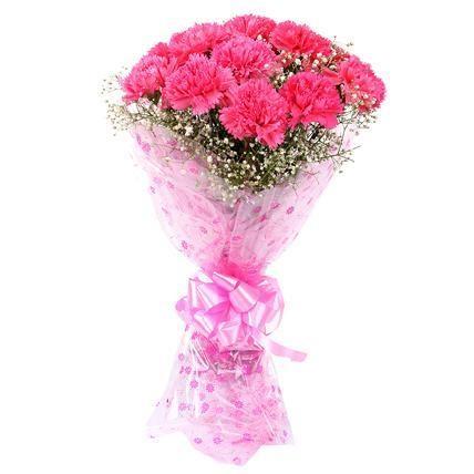 Pink carnation in pink packing