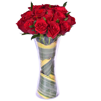 Passion of red roses