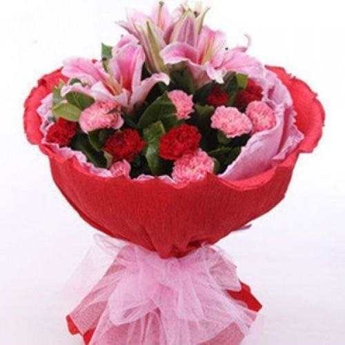 Red and pink carnation in red packing
