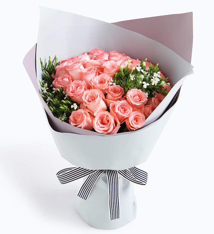 Tender pink rose