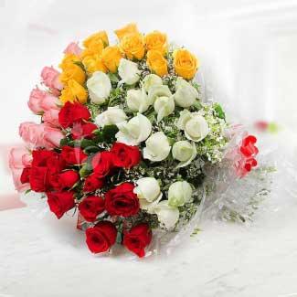 Vibrant roses
